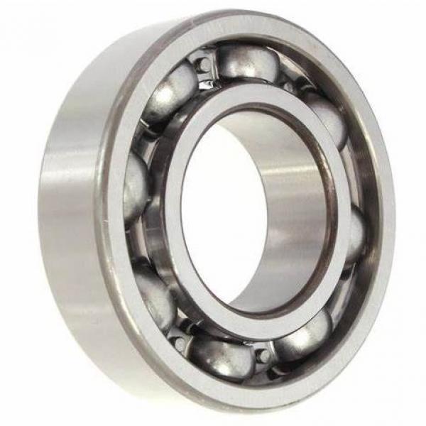 6203 2RS 6902 6303 6205 Rz 6202 Polyurethane 6004 Bearing #1 image